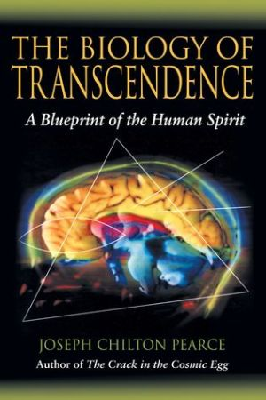 Reading books Biology Of Transcendence