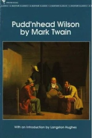 Reading books Pudd'nhead Wilson