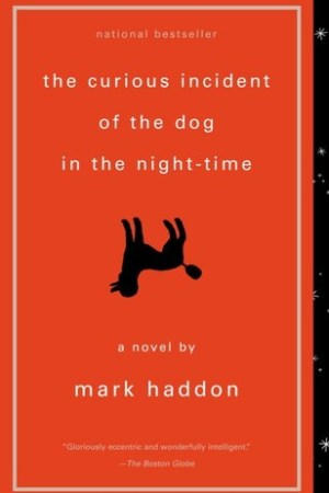 Reading books The Curious Incident of the Dog in the Night-Time