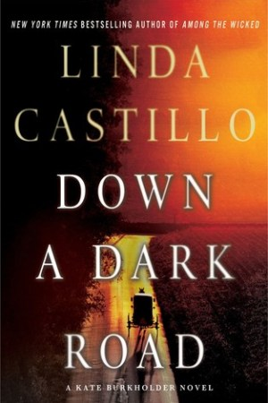 Reading books Down a Dark Road (Kate Burkholder, #9)