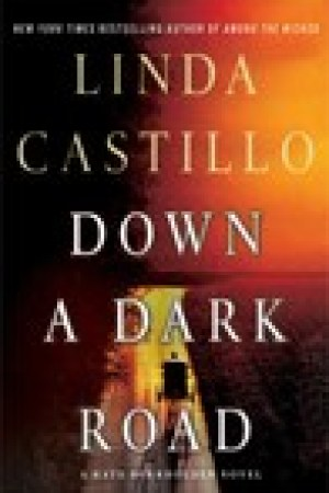 read online Down a Dark Road (Kate Burkholder, #9)