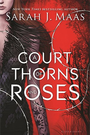 Reading books A Court of Thorns and Roses (A Court of Thorns and Roses, #1)