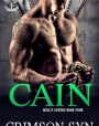 Cain (Hell's Lovers MC, #4)