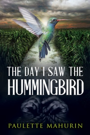 Reading books The Day I Saw the Hummingbird: A Novel
