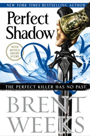 read online Perfect Shadow (Night Angel, #0.5)