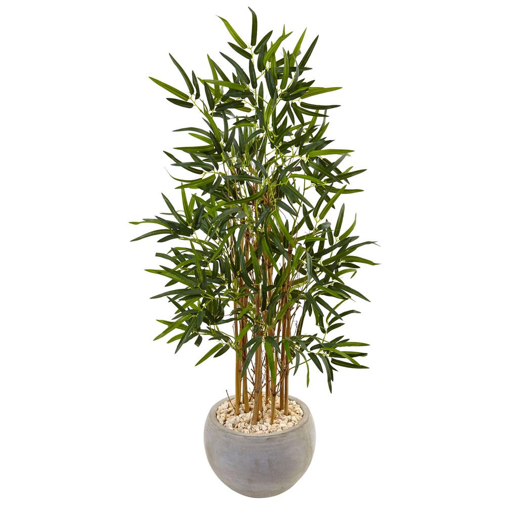 Robust Sale Bamboo House Plant Turning Yellow Sand Colored Bowl Nearly Bamboo Artificial Tree Nearly Bamboo Artificial Tree Sand Colored Bowl Bamboo House Plant houzz 01 Bamboo House Plant