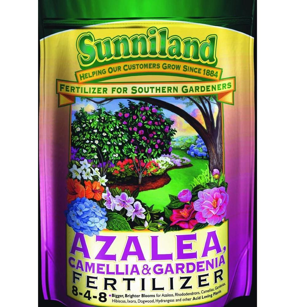 Great Sunniland Plant Flower Fertilizer 122408 64 1000 When To Fertilize Azaleas Sc When To Fertilize Azaleas California houzz-03 When To Fertilize Azaleas