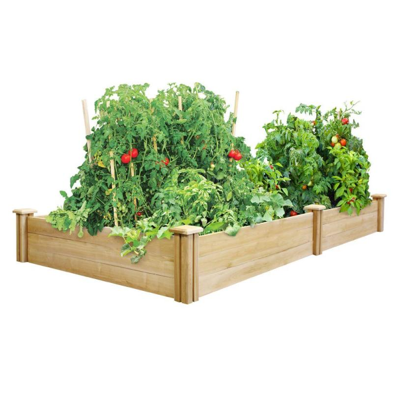 Large Of Home Gardening Kit