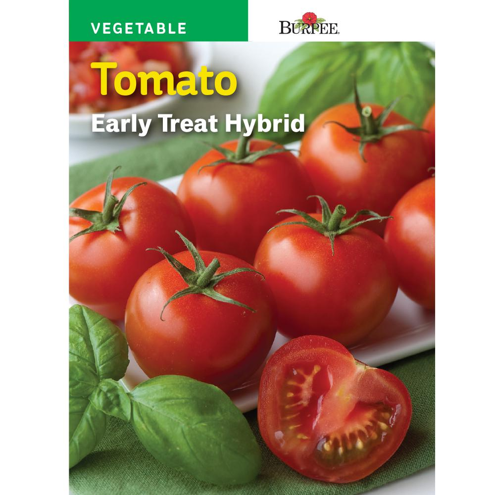 Beauteous Tomato Early Treat Hybrid Seed Tomato Jet Star Hybrid Home Depot Jet Star Tomato Wiki Jet Star Tomato Maturity houzz-02 Jet Star Tomato