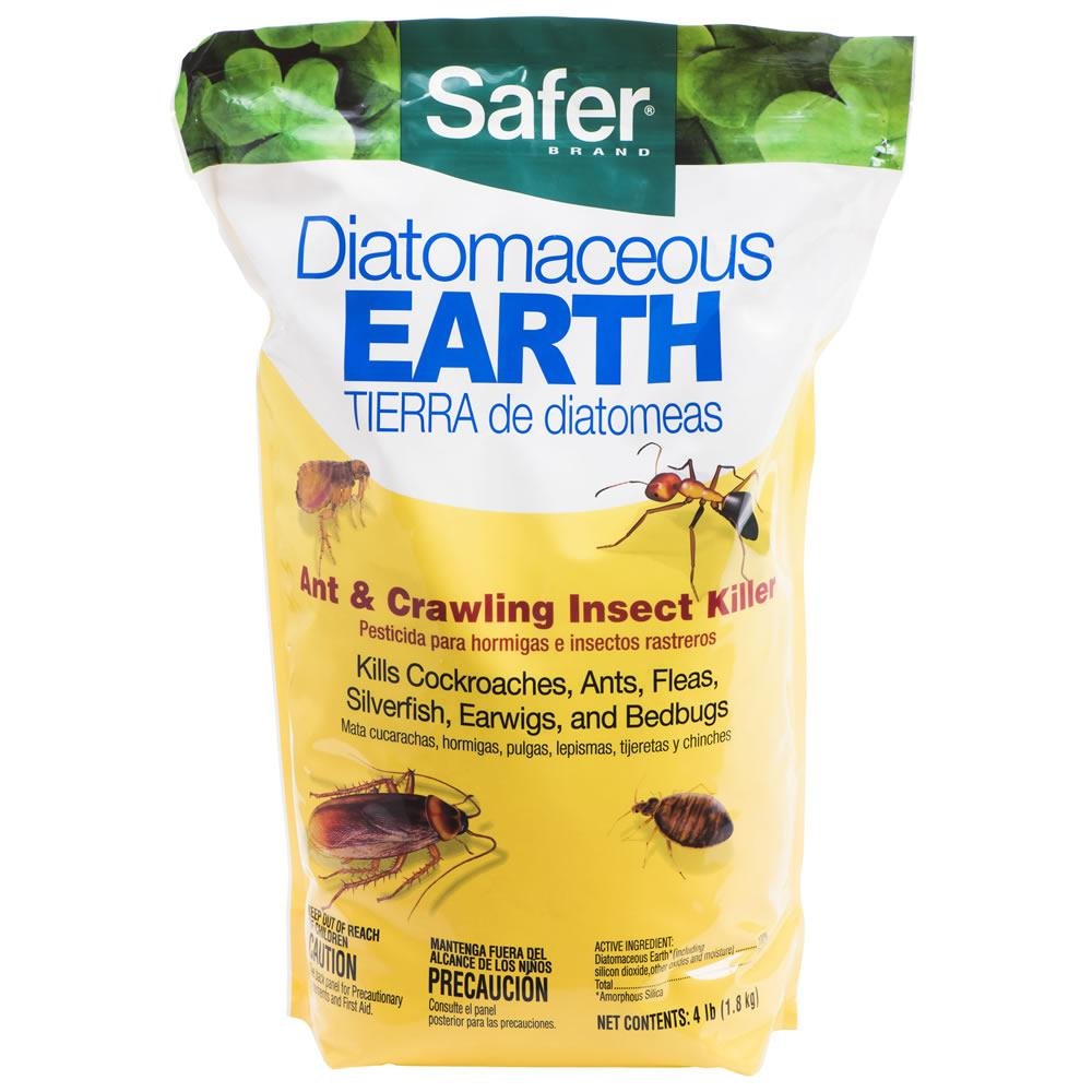Scenic Diatomaceous Earth Bed Crawling Safer Brand Diatomaceous Earth Bed Crawling Does Diatomaceous Earth Kill Fire Ants How Quickly Does Diatomaceous Earth Kill Ants houzz-03 Does Diatomaceous Earth Kill Ants