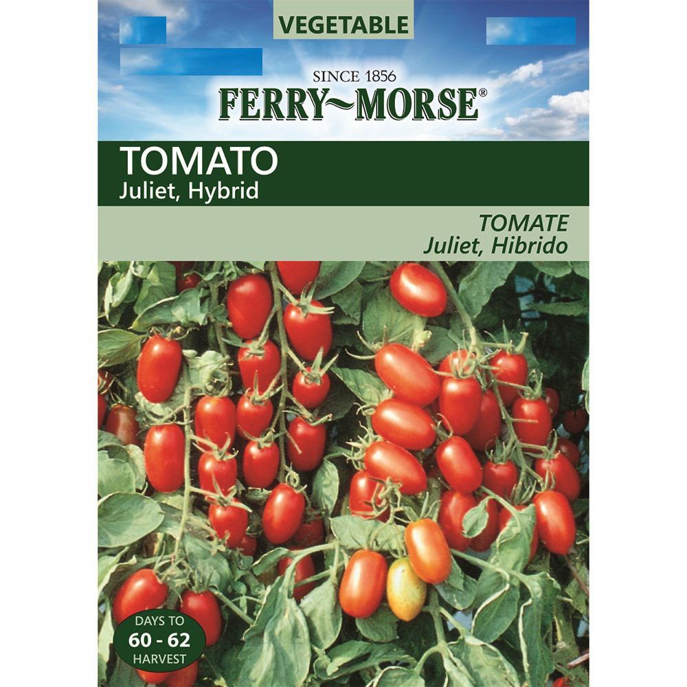 Cushty Tomato Juliet Hybrid Seed Tomato Juliet Hybrid Home Depot Better Bush Tomato Vs Better Boy Better Bush Tomato Determinate Or Indeterminate houzz 01 Better Bush Tomato