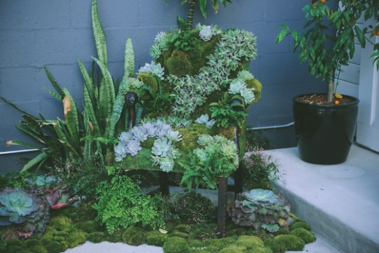 2015-08-27-1440694058-7134063-PHOTO5SucculentChair.jpg