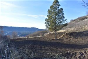 Photo of tbd River Road, Lenore, ID 83541 (MLS # 134165)