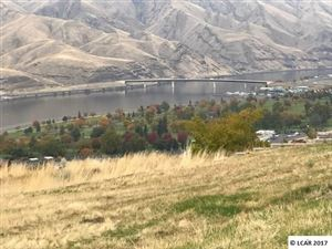 Photo of Lot 1 Block 1 Valley View, Clarkston, WA 99403 (MLS # 135182)