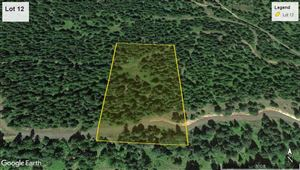Photo of tbd Lot 12 Bland Road, Lenore, ID 83541 (MLS # 136471)