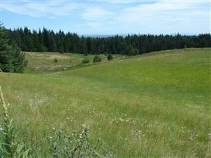 Photo of tbd Lot 3 Ceres Drive, Lenore, ID 83541 (MLS # 136475)