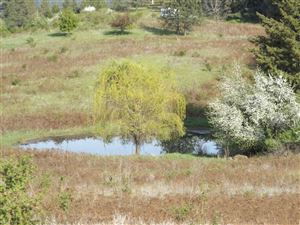 Photo of 000 Old Melrose Grade, Peck, ID 83545 (MLS # 134516)