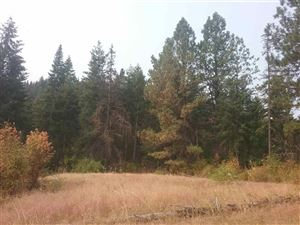 Photo of TBD TBD, Orofino, ID 83544 (MLS # 135559)