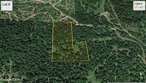 Photo of tbd Tincup Ln Lot 9, Lenore, ID 83541 (MLS # 135713)