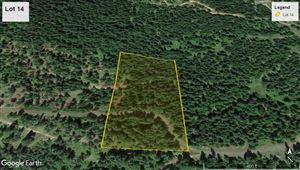Photo of tbd Bland Rd Lot 14, Lenore, ID 83541 (MLS # 135725)