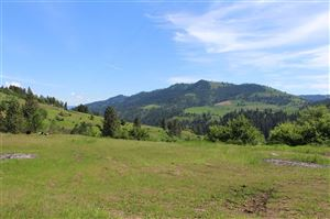 Photo of 620 OLD PECK GRADE, Lenore, ID 83541 (MLS # 134743)