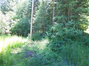 Photo of NNA Waha Glen Road, Waha, ID 83501 (MLS # 134830)