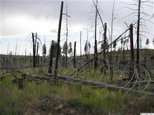 Photo of sec. 34 twp. 10 Range 42, Pomeroy, WA 99347 (MLS # 125972)