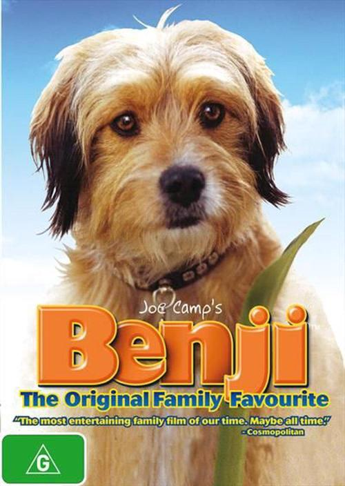 Medium Of What Kind Of Dog Was Benji