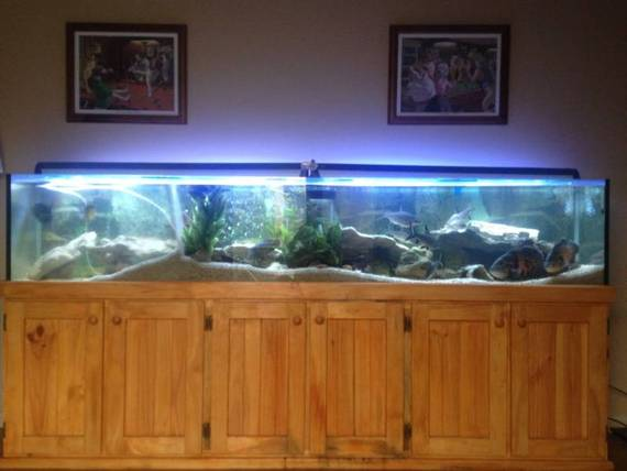 ft Fish Tank Aquarium with Weir, 4 ft Multistage Sump Tank and