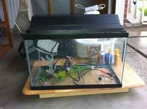 10 Gallon Glass Aquarium   (Parker) for Sale in Denver, Colorado