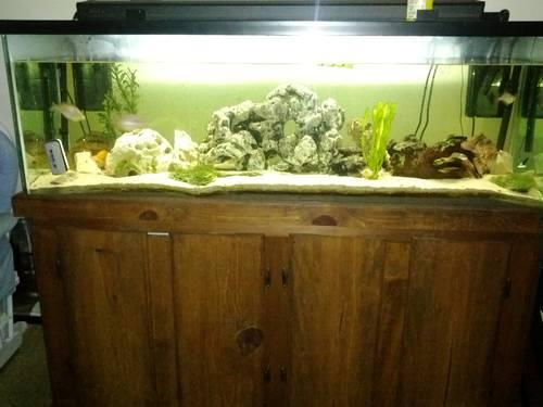 100 GALLON AQUARIUM/Fish Tank WITH WOOD STAND for Sale in Corpus
