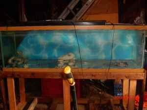 100 gallon fish tank w/stand (montvale) for Sale in Roanoke, Virginia