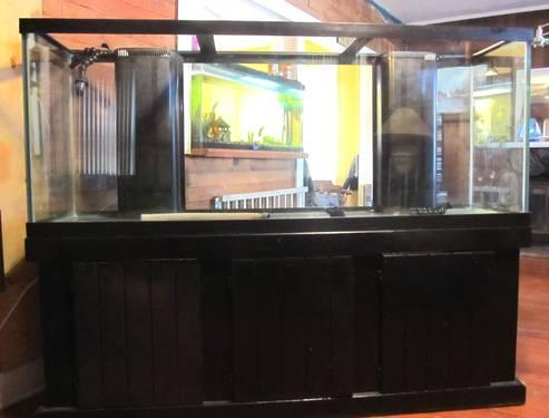 150 Gallon Fish aquarium with stand for Sale in Marion, Illinois