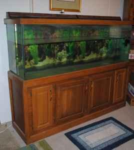 150 Gallon Fish Tank   (South Side   BTown) for Sale in Bloomington