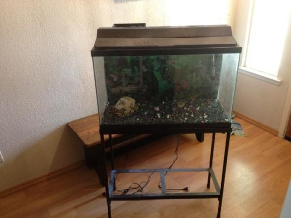 30 GALLON FISH TANK AQUARIUM WITH STAND   $100 (LEMOORE) for sale in