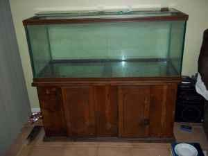 75 Gallon Aquarium w/Stand   $200 (Kissimmee, FL) for sale in Orlando