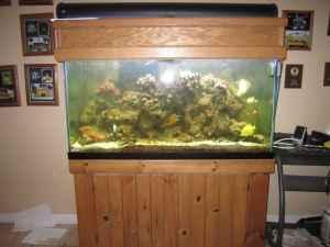 GALLON SALT WATER SALTWATER FISH TANK aquarium   (WINCHESTER) for Sale