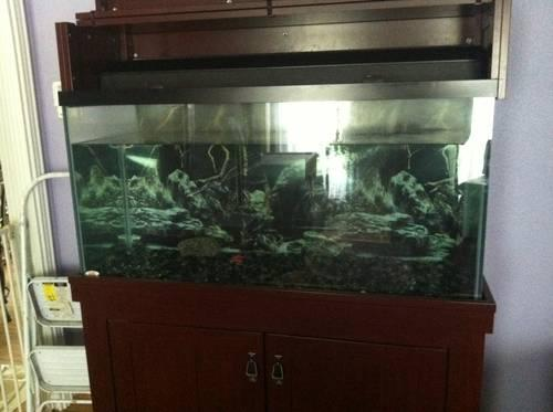 AGA) 90 gallon aquarium fish tank with AquaClear 110 filter for Sale