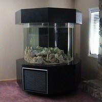 100 gallon octagon fish tank - 55 Gal hexagon fish tank (acrylic) with black stand. Comes complete