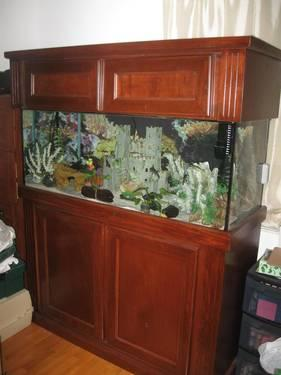 Aquarium 75 Gallon Complete Fish Tank Set Up for Sale in Vero Beach