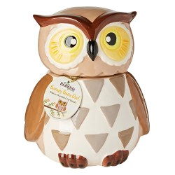 Small Crop Of Owl Cookie Jar