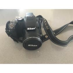 Small Crop Of Nikon Coolpix P500