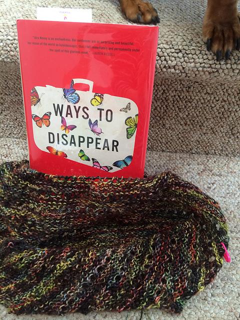 Ways to Disappear & shawl in progress