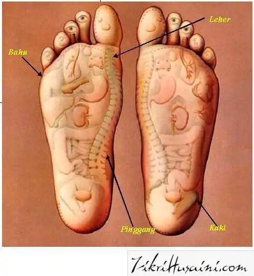 tapak kaki, gambar kaki, kaki,