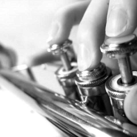 trumpet-2-1512119 (1351 x 1000)