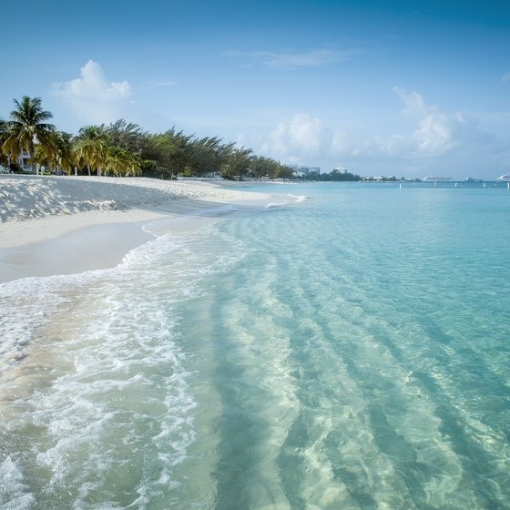 How to Get Married in the Grand Cayman Islands   USA Today How to Get Married in the Grand Cayman Islands
