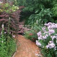 Тропинки и дорожки в саду на даче - идеи мощения