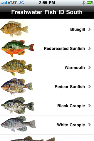 florida freshwater fish identification guide