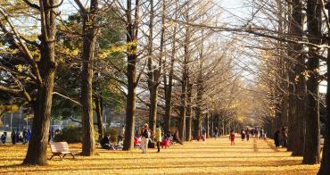 11月來日本別錯過「國營昭和紀念公園」銀杏+楓葉宛如日劇場景