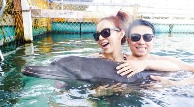 ▌峇里島 ▌巴里島浪漫婚拍♥DAY2 讓人內心澎湃~與海豚的第一次親密接觸(影音)